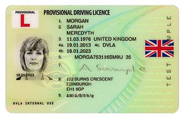 uk-driving-licence_provisional_front_fla