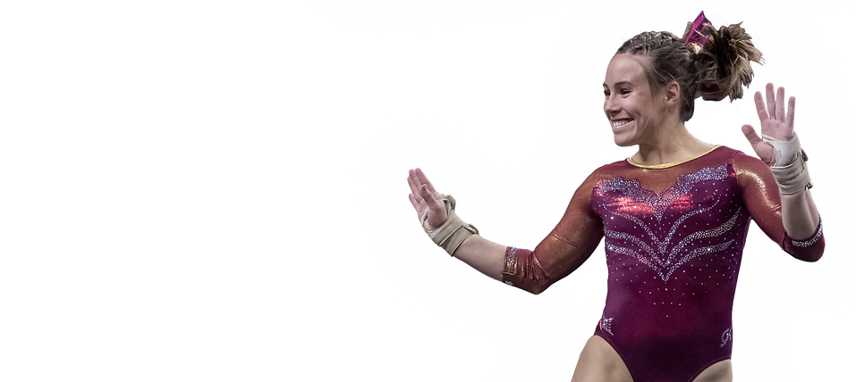 ISUGym18-2.png