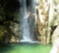 PICT0293_edited.jpg