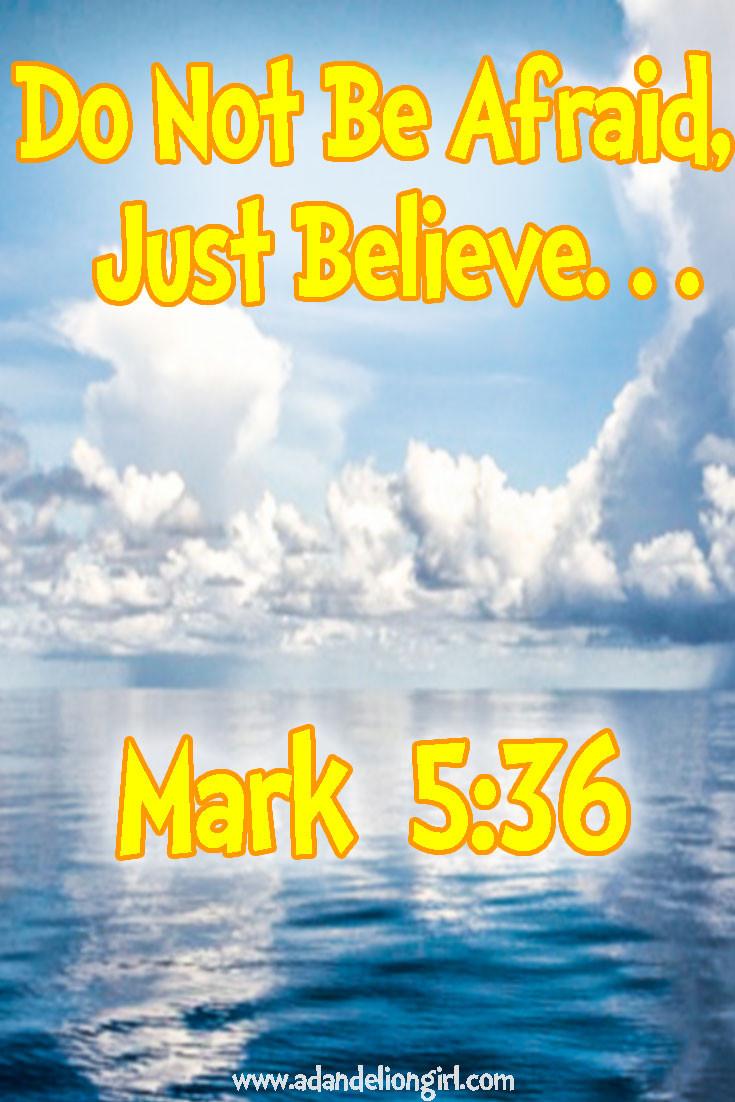 Mark536.jpg