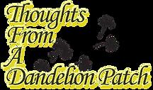 origination of dandelion wish