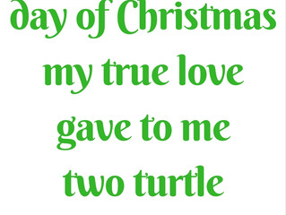 The Second Day of Christmas Meaning