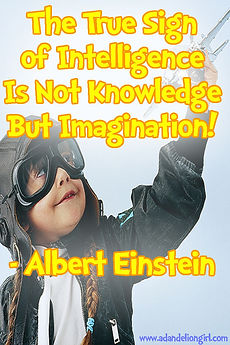 The true sign of intelligene is not knowing but imagination Quote from albert einstein