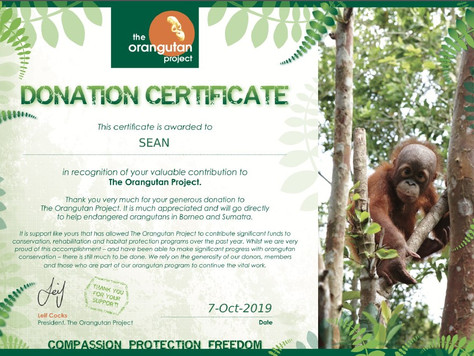 Thank you from Orangutan project