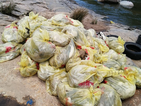 Update on Jukskei River Clean Up