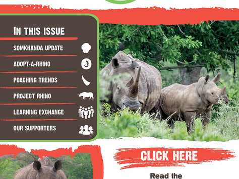 The Rhino Reporter