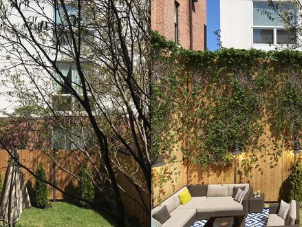 Before&After_Renovation 2019.04.jpg
