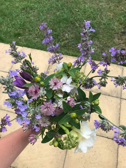Summer purples and whites
