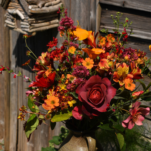 "Eschscholzia, salvia, ""Totally Tangerine"" geum, valerian, ghot chocolate rose, alstromeria, ""For Your Eyes Only"" rose, f"