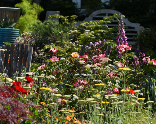 The beautiful garden where many of my flowers are sourced from
