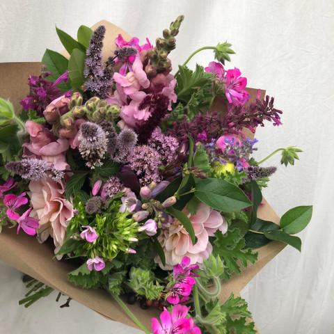 English pink blooms