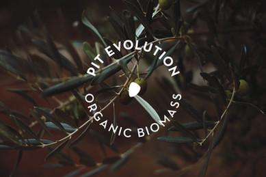 Project António - PitEvolution.jpg