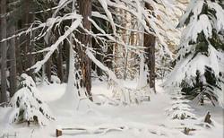 """""""Зимой в лесу"""""""