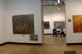 Выставка Сергея Федотова в Центральном доме художника, январь 2010.