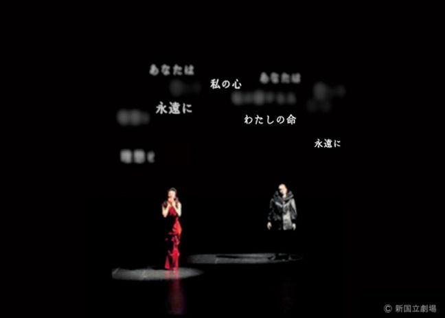 poppea_gousei2.jpg