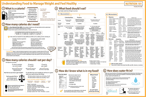 Nutrition 101 - The Big Picture - 24x36