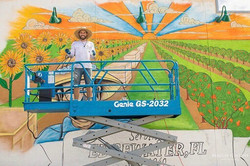 Mural Painting for Nature Nates