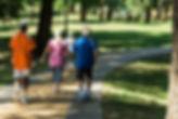 Group of seniors exercising.jpeg