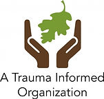Trauma-300x287.jpg