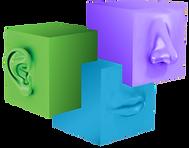 Praktyk Logo_Cubes 2020.png
