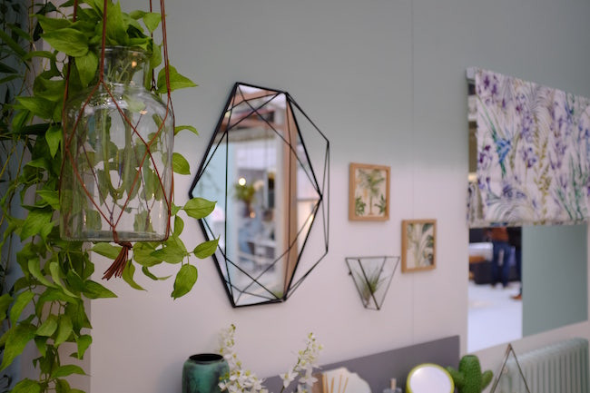 Hanging plant accessories