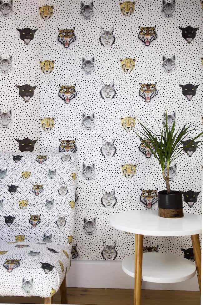 Wildcats wallpaper print and fabric