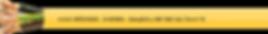 csm_SBP_680_798d25e980.png