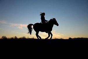 Découverte du Vexin Français, balades à cheval, balades à dos d'ânes, éco-tourisme, cyclo-tourisme