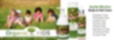 Organic Kids Body And Hair Care, Gluen Free, Wheat Free, Paraben Free, Chemical Free, Sulfate Free skincare, Kids Organic Hair Shampoo, Kids Organic Body Wash, Kids Organic Hair Detangle