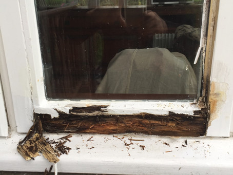 How Old Are Your Doors and Windows?