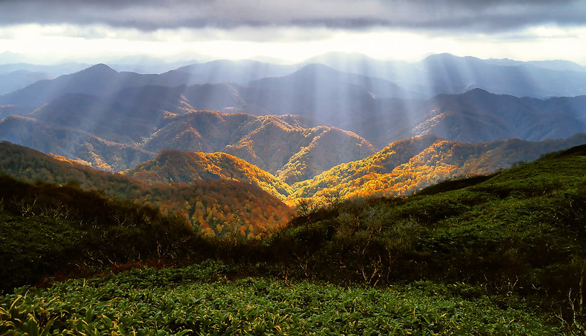 autumn-2183489.jpg