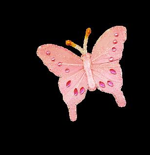 Palvinka_FlowerEssence_butterfly1.png