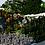 Thumbnail: 10k x 10k Terrain