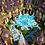 Thumbnail: Fantasy Prison Spawn