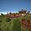 Thumbnail: Town - Survival Spawn