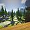 Thumbnail: Roseblood Gardens PVP Arena