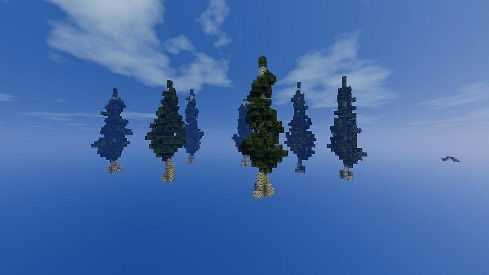 Birch Tree Pack