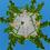 Thumbnail: Mayan Temple KOTH