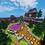 Thumbnail: Purple Magic Hub