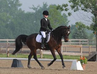 USEF Dressage Seat Medal Finals at Lamplight Equestrian Center