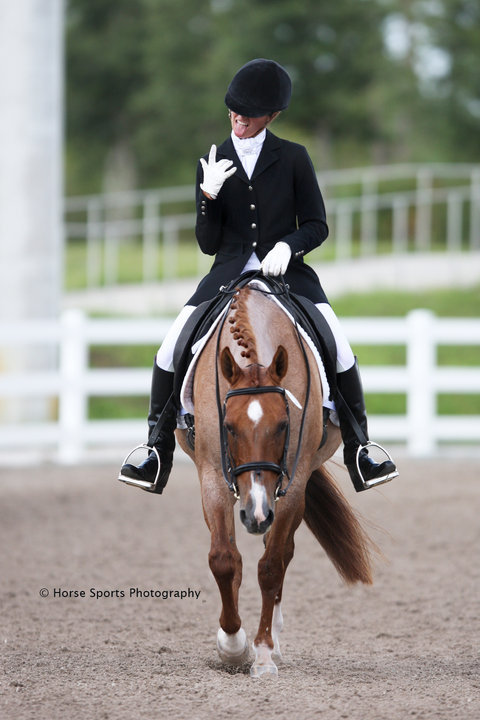 Wellington Classic Dressage