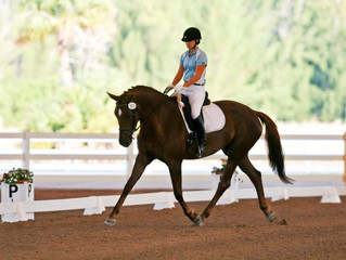 Wellington Classic Dressage in the Tropics I & II