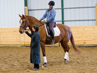 FEI & FEI Young Horse Workshop with Kathy Connelly