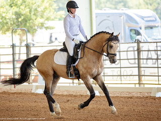 Grand Oaks May Dressage Show 2019
