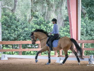 Wind Song Farm Schooling Show