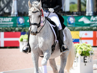 Another successful CDI showing at Global Dressage Festival Week 7