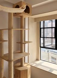 貓網-304不銹鋼貓網三趟窗戶開啟效果 | Hometown Design