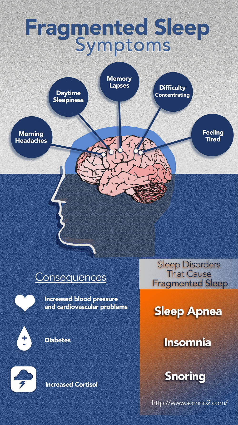 Fragmented Sleep Symptoms, morning headaches, daytime sleepiness, memory lapses, difficulty concentrating, feeling tired