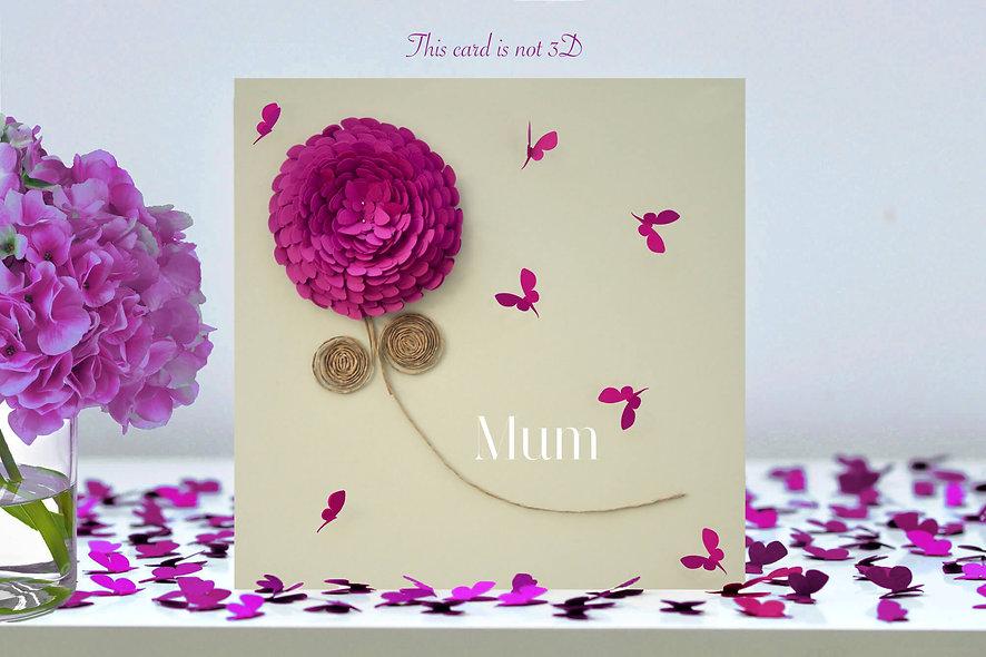 Mum Pink Chrysanthemum Flower Card