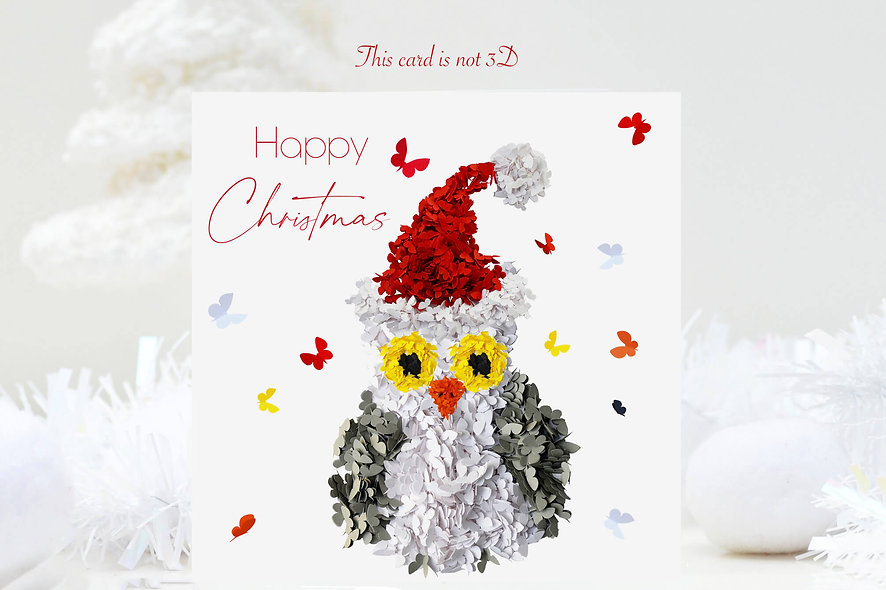 Butterfly Owl Christmas Card